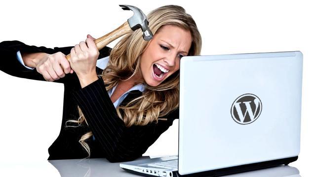 Wordpress Hulp gezocht